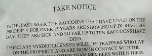 Raccoon Notice